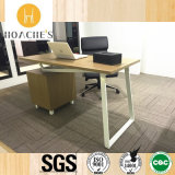 Simple New Style Melamine Computer Desk for Office (WE05)
