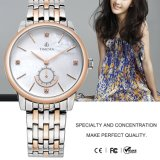 숙녀 손목 시계 Steel Watch 형식 디자인 숙녀 최신 판매 수정같은 숙녀 시계 71125