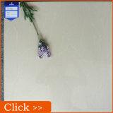 Baja precio de la promoción pulido Porcelana Azulejos Sal Solube 600X600