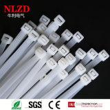 Natürliche weiße Plastikreißverschluss-Gleichheit des Farben-Nylonkabelbinder-Nylon-66