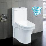 中国の製造業者の一つの二重水洗便所