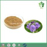20:1 de 10:1 des saponines 5%-50% d'extrait de luzerne d'herbe