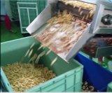 Linha de produção de chips de alta qualidade com extrusora