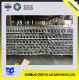 Perfis da extrusão da liga de alumínio da alta qualidade para o frame de módulo do picovolt