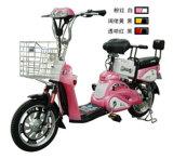 Elektrisches Fahrrad (CTM-103)
