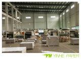 Preço barato Alta qualidade revestido Duplex Board Gray Back in Sheet