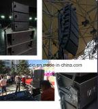La línea altavoz del Ns 12 del arsenal escoge FAVORABLE audio de 15 pulgadas