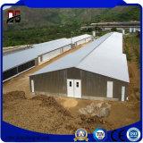가벼운 강철 구조물 건축 Brolier 닭 농장 헛간