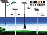 Lumière solaire approuvée de jardin de la CE 15W avec 3.5m Polonais