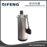 Garten-Edelstahl Motor Shell Clarified Water Pump mit Float
