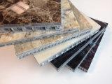 Panneau en nid d'abeille en aluminium de marbre léger pour rideau mur