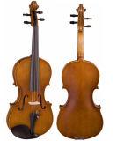 Estudante de nível médio Violino Vla-9 (4/4 ~ 1/32)