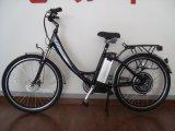 Bici approvata del CE E (KTN-009)