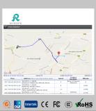 La cuerda en línea en tiempo real basado en la Web Software de seguimiento GPS