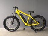 Unterschiedlicher Farben-fetter Reifen-Paladin-elektrisches Fahrrad mit 21 Geschwindigkeits-Lithium-Batterie
