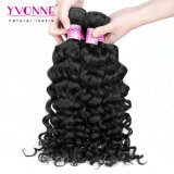 卸し売りベストセラーのカンボジアのバージンのイタリアの巻き毛の人間の毛髪の拡張