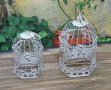 プラントのための装飾的な金属の鳥籠