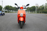 Gas Scooter 125cc engine with LED Light