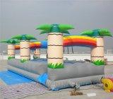 Diapositivas de agua inflables (B4072)