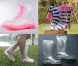 Различных женщин ПВХ дождя ботинки, Леди прозрачные дождя, моды загрузки загрузки дождя и освещенности