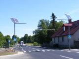 Hohe Solar30W straßenbeleuchtung der Helligkeits-6m für Dorf-Projekt