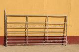 Euro transenne d'acciaio delle pecore galvanizzate del mercato stile da vendere (XMR76)