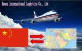 바다 공기 중동에 심천에서 급행 출하 운임 또는 광저우 또는 상해 또는 Xiamen 또는 Ningbo 또는 Tianjin