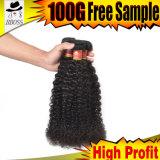 Курчаво бразильской поставкы волос от Kbl (Гуанчжоу)