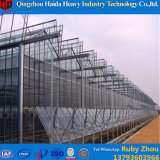 Low Cost Commercial Plastic Light Deprivation Greenhouse