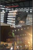 Dodecagon 14m Stahl galvanisierte Energie Pole