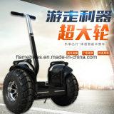 1000W coche eléctrico con 96V