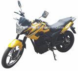 Der Südamerika-Kuba Panama elektrisches Motorrad 2017 Markt-Mexiko-heißes Verkaufs-60V2500W