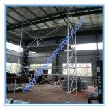 Lo SGS sicuro approvato ha galvanizzato l'armatura per costruzione