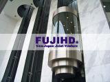 FUJI-Beobachtungs-Höhenruder-panoramischer Aufzug-Sino-Japanese Jointventure