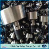 Buena calidad de China y rodamiento de rodillos de acero de aguja del precio Gcr15 (KR30 CF12)