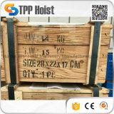 Bloco puxando Chain de Hsz 3000kg
