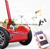 Stadt 1000W auf Straßen-elektrischem Selbstausgleich-Roller mit 48V