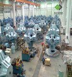 클라이언트를 위한 본래 디자인을%s 가진 입방 수압기가 Guilin 남자에 의하여 탄소 다이아몬드에게 했다