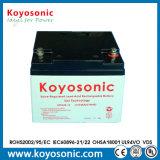 Niedrige Leitungskabel-Kristall-Batterie-Gel-Batterie der Selbstentladung-12V 24ah