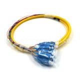 Trecce ottiche della fibra dello Sc 12core di uscita della fibra