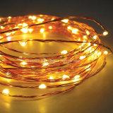 Buntes LED-kupferner Draht-Zeichenkette-Licht für Dekoration
