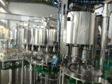 Remplissage automatique de l'eau minérale de bouteille d'animal familier