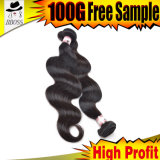 人間の組みひもの毛のマレーシアの毛の拡張