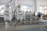 Volledig Automatische van de Granaatappel van het Sap het Vullen en van de Verpakking Machine