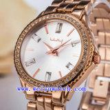 Горячий продавая вахта подгоняя wristwatches подарка (WY-019D)