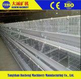 Apparatuur de van uitstekende kwaliteit van het Landbouwbedrijf van het Gevogelte van de Kip voor Verkoop