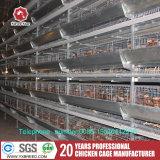 Aziende agricole delle galline ovaiole delle gabbie di batteria con il sistema automatico