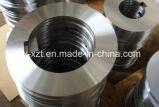 En acier à ressort en acier inoxydable de haute qualité