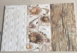 parete delle mattonelle della stanza da bagno di 30X60 cm
