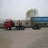 Libro macchina di Sinotruk HOWO 371HP/camion del legname per trasporto del legno